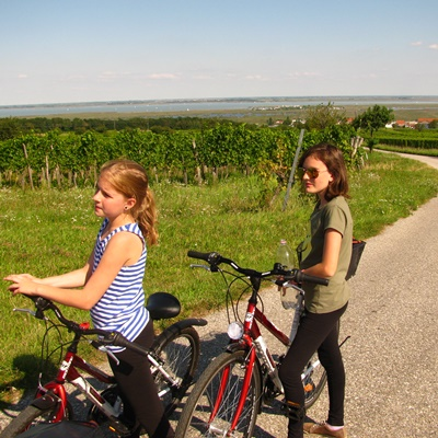 Hop on a bike! Recommended routes for cycling